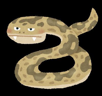 に 噛ま れる 夢 ヘビ 緑の蛇の夢占いの意味21選!緑色のヘビに噛まれる・追いかけられる夢は?