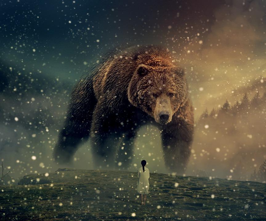 熊 が 出 て くる 夢