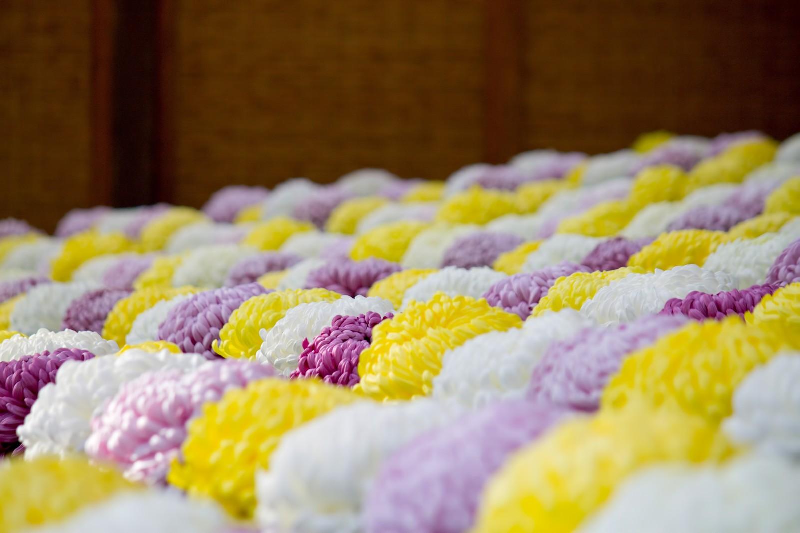 葬式 夢 占い お 【夢占い】葬式の夢の意味23選 行く・準備・自分など状況別に夢診断